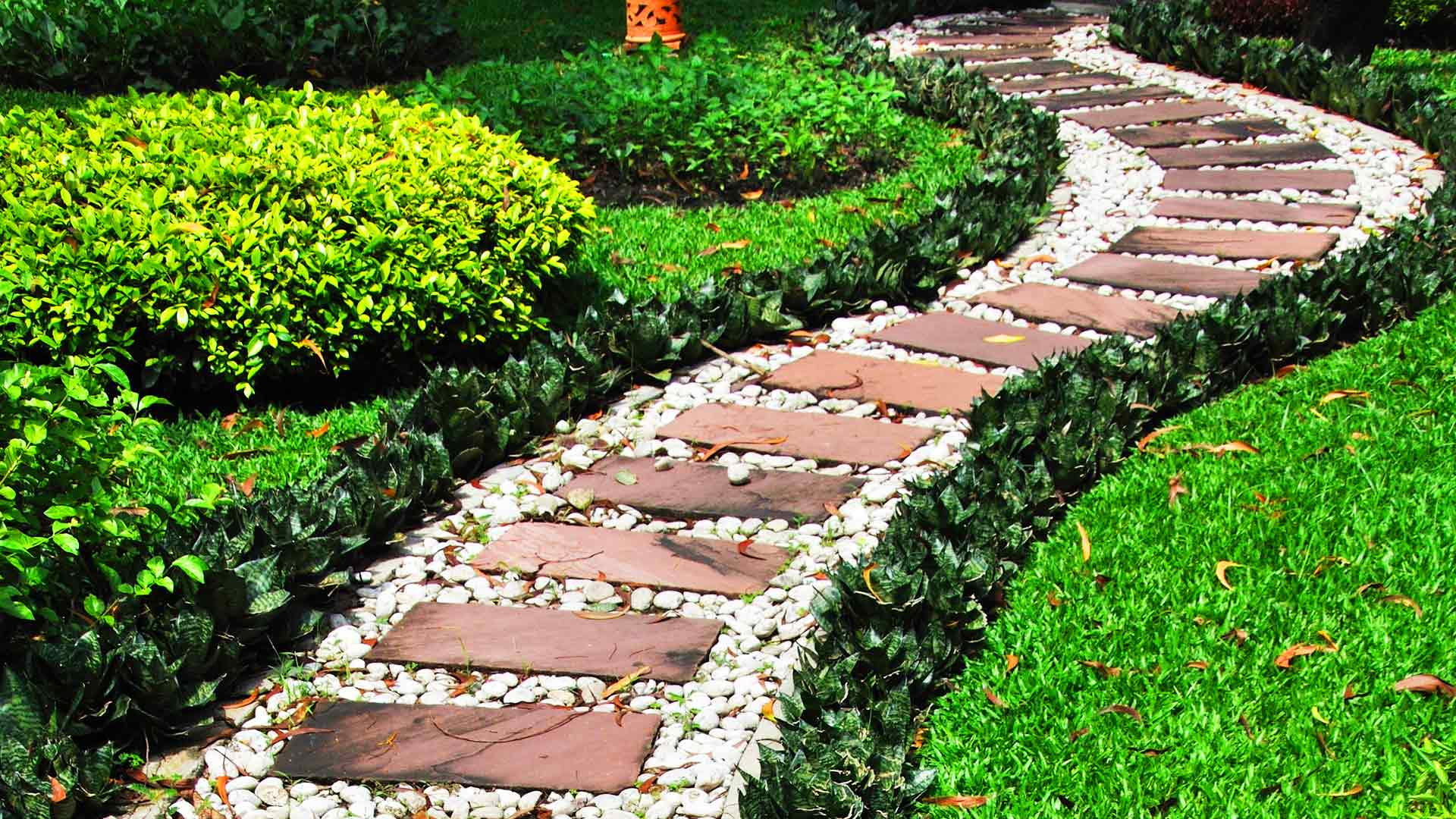 The articles of our blog are a pathway to useful information about lawn and landscape maintenance.