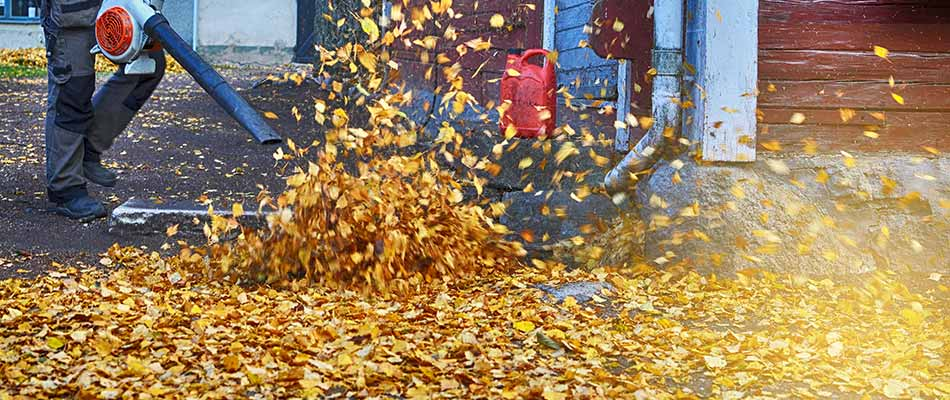 Blowing leaves off of a property in Bowling Green, KY.