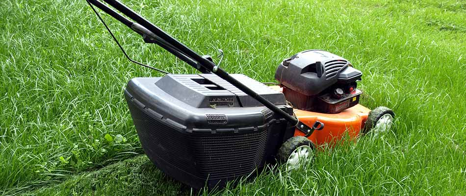 Is Professional Lawn Mowing Really Better Than Doing It Yourself?
