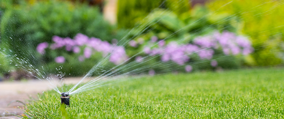 A sprinkler watering a lawn in Bowling Green