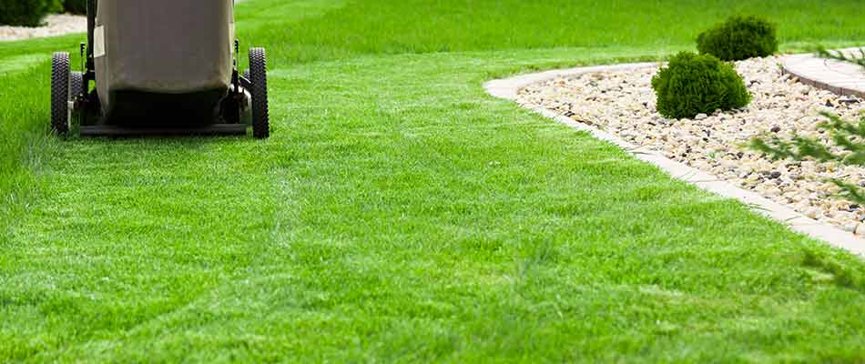Bowling Green homeowner receiving lawn mowing and maintenance services from Spring View Lawns.
